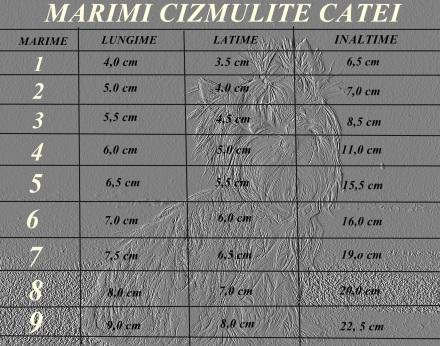 tabel marimi cizmulite catei