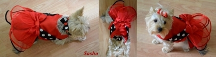 sasha cu rochita Sissi
